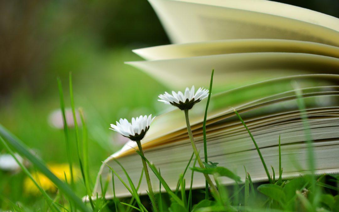 """Visa mana grāmata """"Uzdrīksties dzīvot"""" tās oriģinālversijā"""